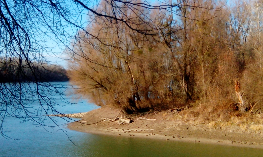 Pogled na Dunav