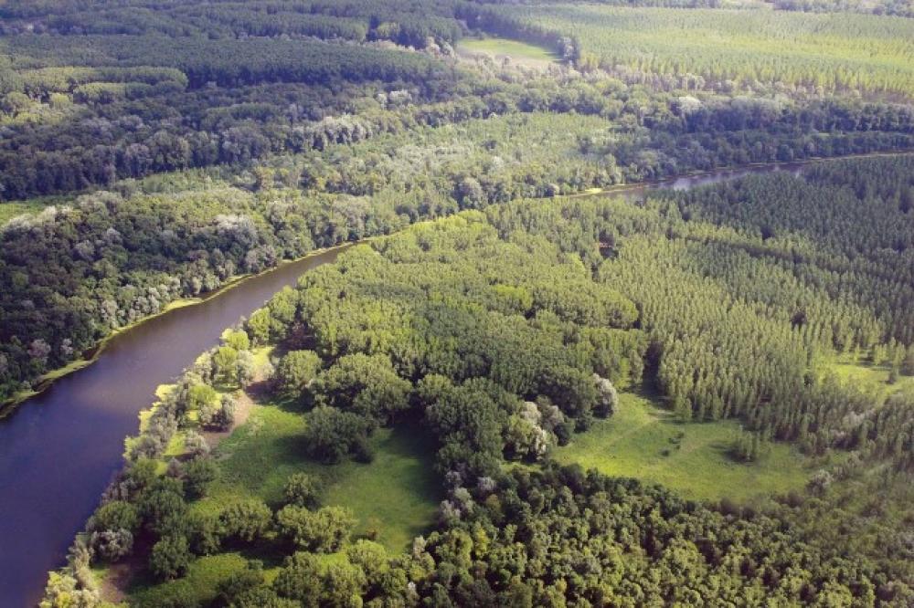 Dunavac Gornje Podunavlje