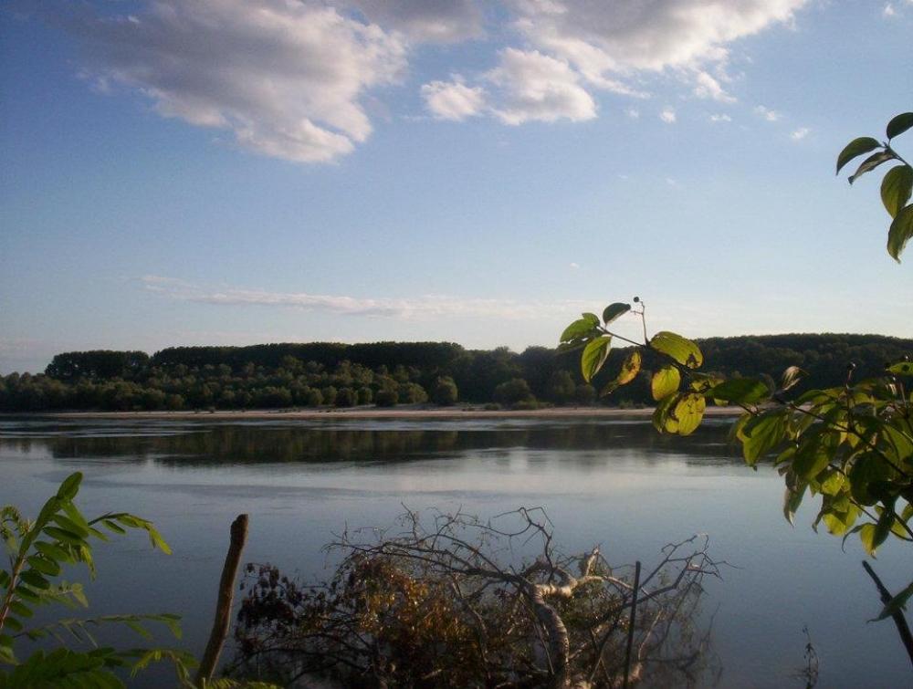 Dunav Monostor