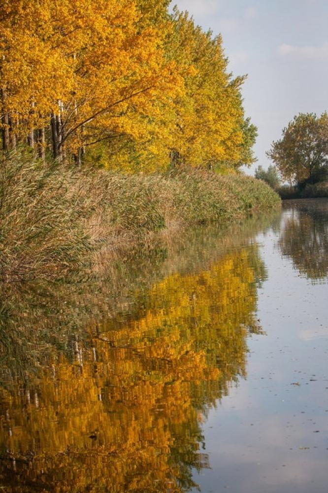Kanal Dunav-Tisa-Dunav Monostor
